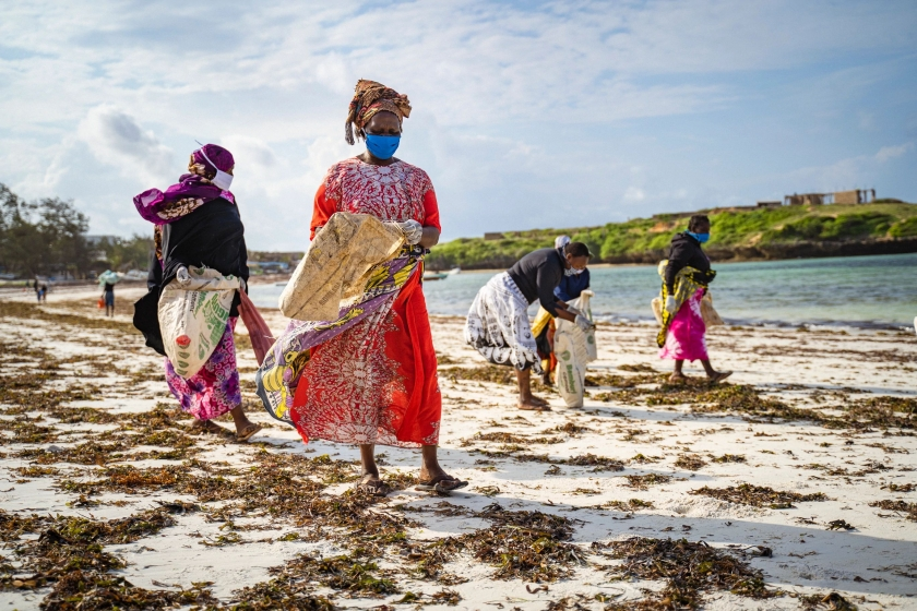 A group of local women collect plastic waste on the beach in Watamu, Kenya.