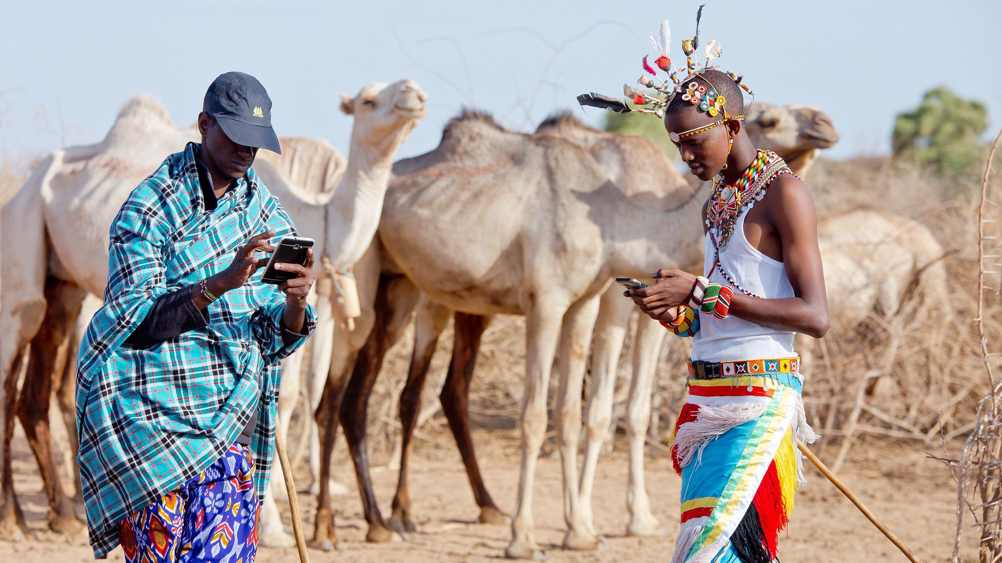 Kenyan pastoralists with cell phones using mobile app to beat the drought.