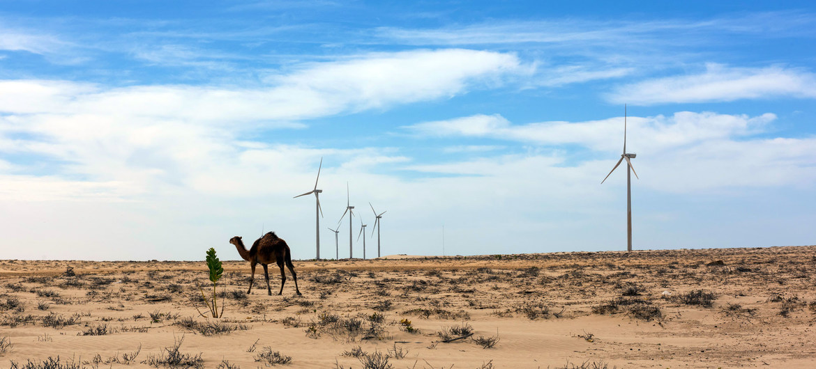 Proposed global roadmap shows how universal access to sustainable energy can be achieved by 2030, transforming the lives of millions | United Nations