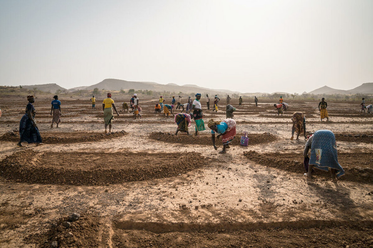 A group of mostly women dig half-mood shapes in the soil.