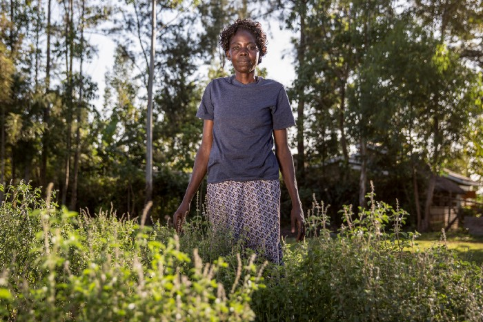 Marida Shinzai and her neighbours formed Muliru Farmers' Cooperative group to manage and protect Kakamega, which is the only rainforest in Kenya.