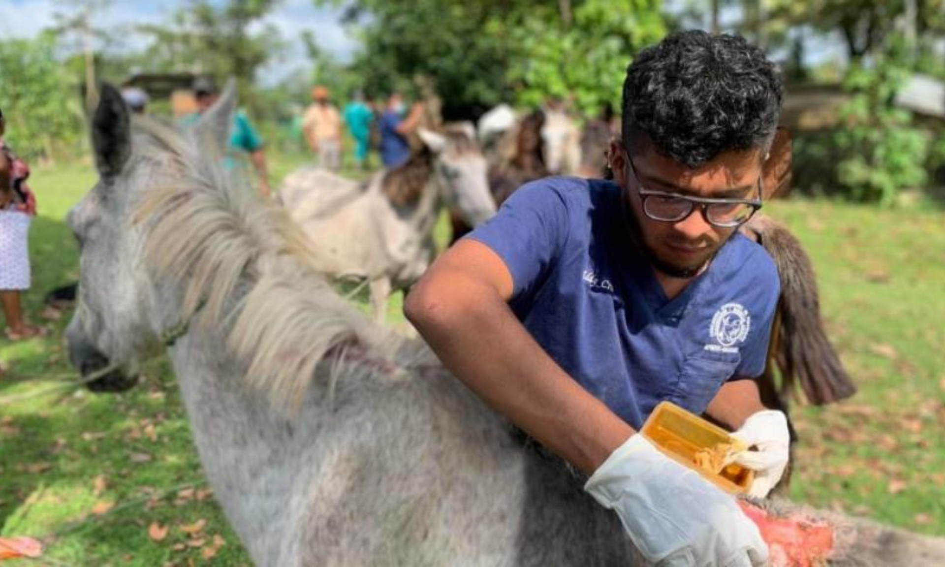 In Nicaragua, civil society groups include livestock, a critical rural asset, in disaster risk management plans to address the climate challenge.