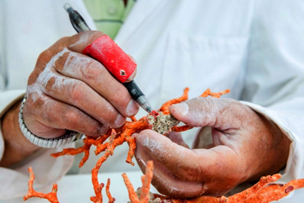 Hands using a tool to work with a red coral