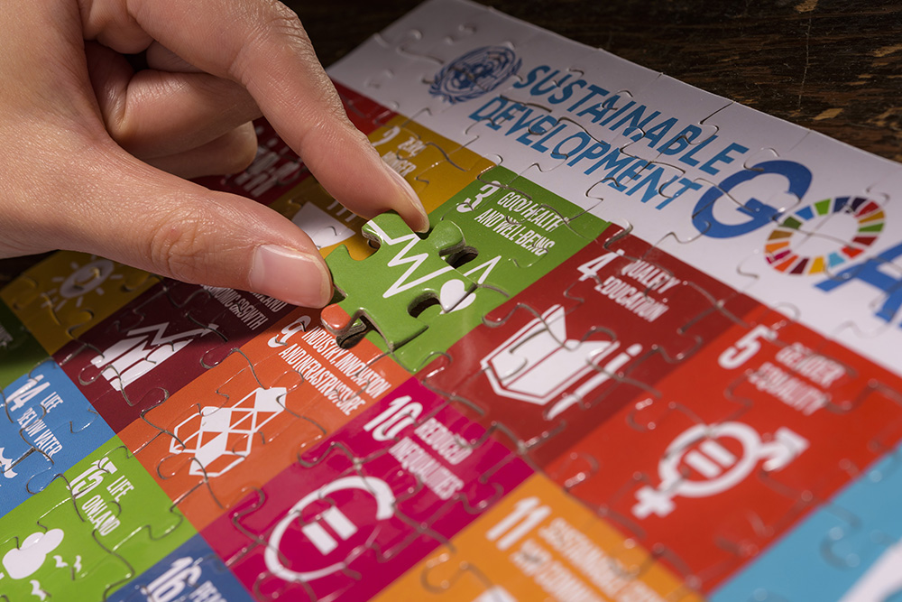 A piece of the Sustainable Development Goals puzzle, SDG 3 - Ensure healthy lives and promote well-being for all at all ages.