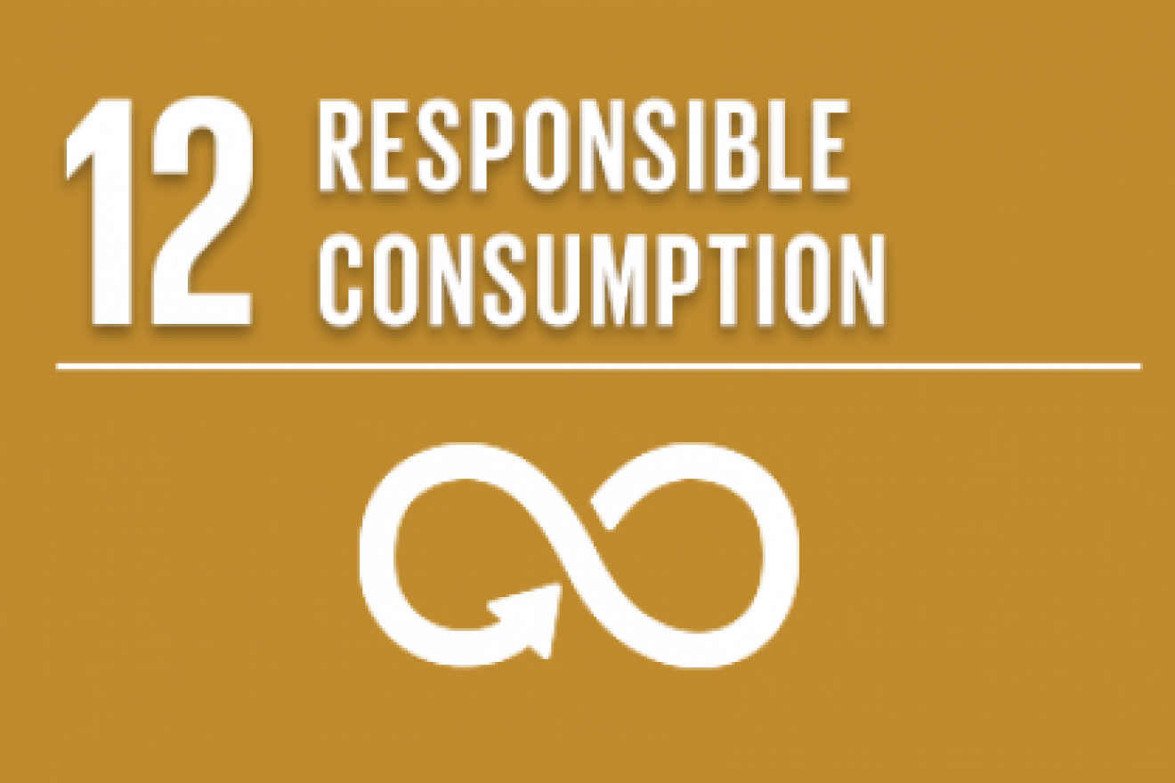 SDG 12: Sustainable consumption and production