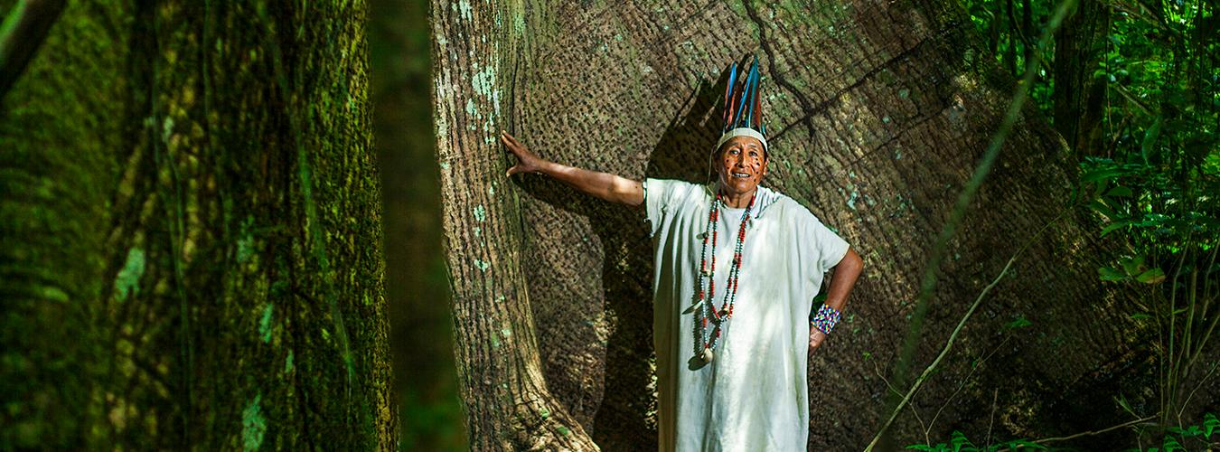 Indigenous man poses in the forest