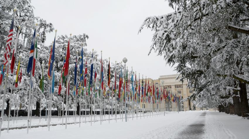 A line of flags on poles extends to the Palais des Nations as snow covers the ground and trees