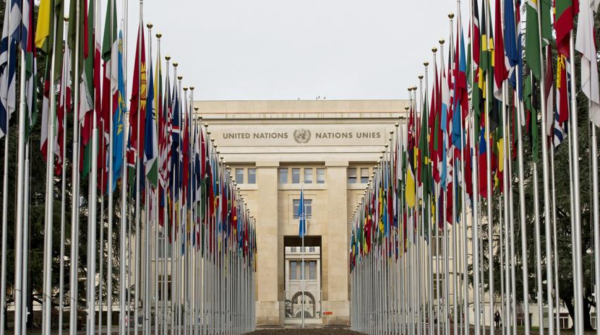 Two straight lines of flag poles displaying flags of member states extending to the Palais des Nations