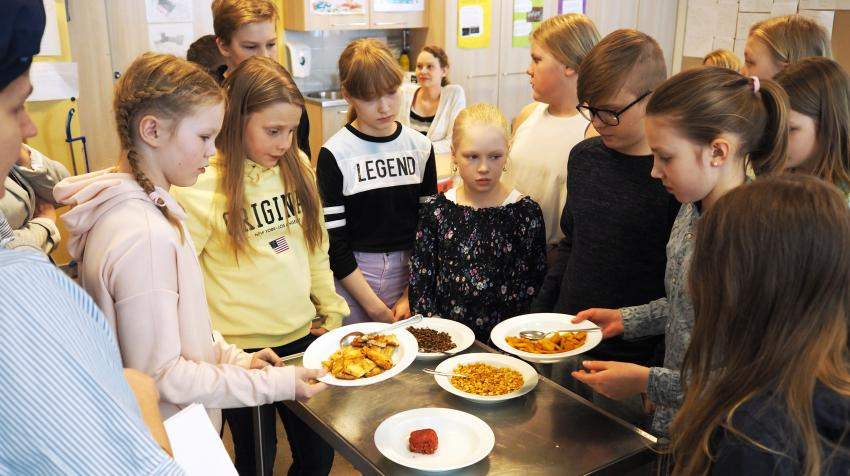In Finland, school children are learning to incorporate pulses—a group of edible legumes—into their diets. In Jyväskylä, Finland, students took a protein tasting quiz organized by the Finnish Environment Institute. ©Childrens' Parliament of Jyväskylä.