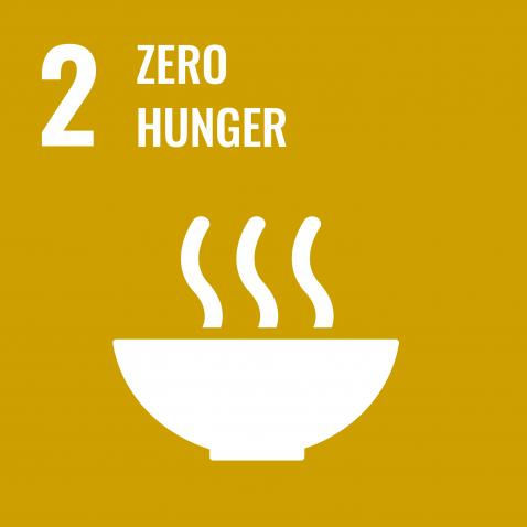 The Path to Peace Starts with Food | United Nations