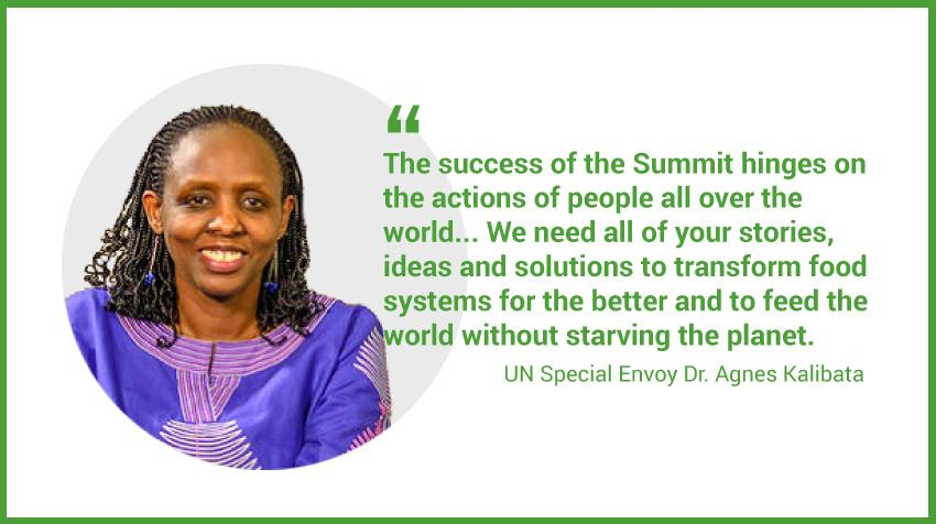 Photo Special Envoy Agnes Kalibata and quote from the press release