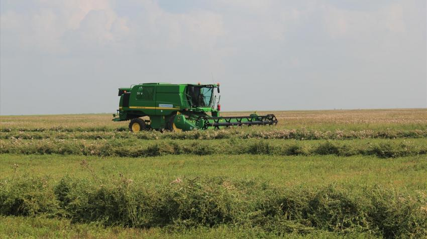 The sector is essential for improving food security and social livelihoods in Kazakhstan (Photo: UNDP Kazakhstan)