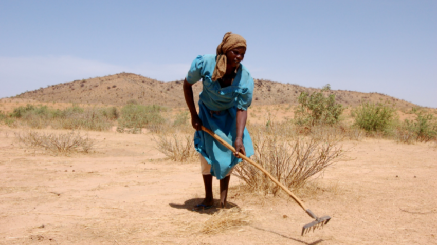 a woman plowing