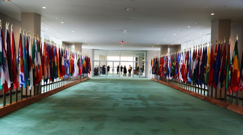 Long green-carpeted hallway with member state flags on each side.
