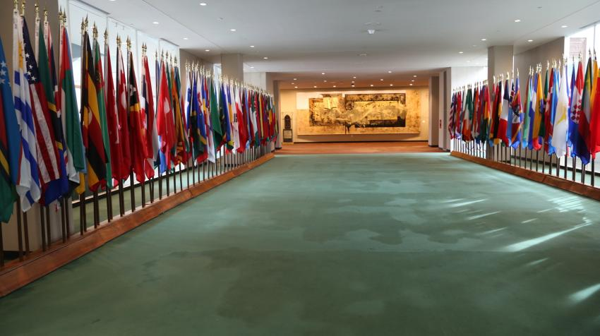 Long green-carpeted hallway with member state flags on each side and a painting gifted from Mexico at the end of the hallway.
