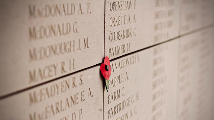 A poppy memorializes lives lost during World War I in Belgium. Photo courtesy  Jelleke Vanooteghem / unsplash
