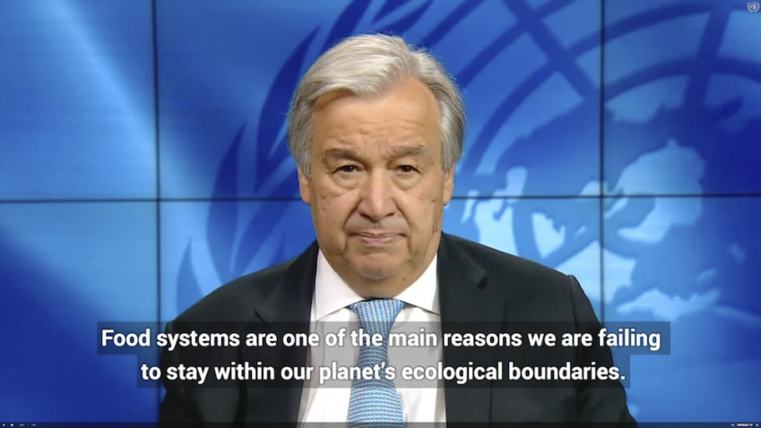 Un Secretary-General announces Food Systems Summit in September 2021