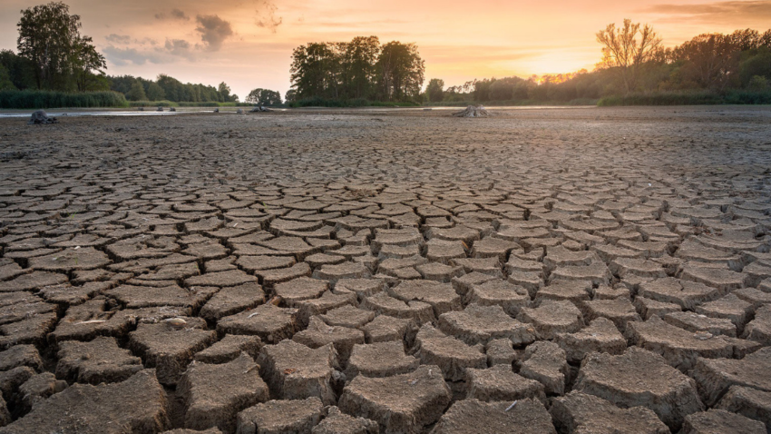 Special Report on Drought 2021