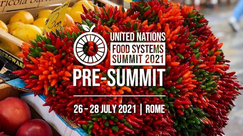 Pre-Summit will be hosted by the Government of Italy on July 26-28, 2021