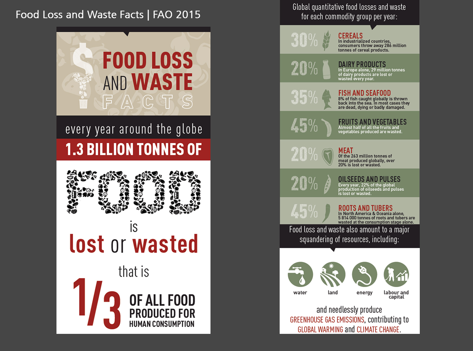 Food Loss and Waste Facts   FAO 2015