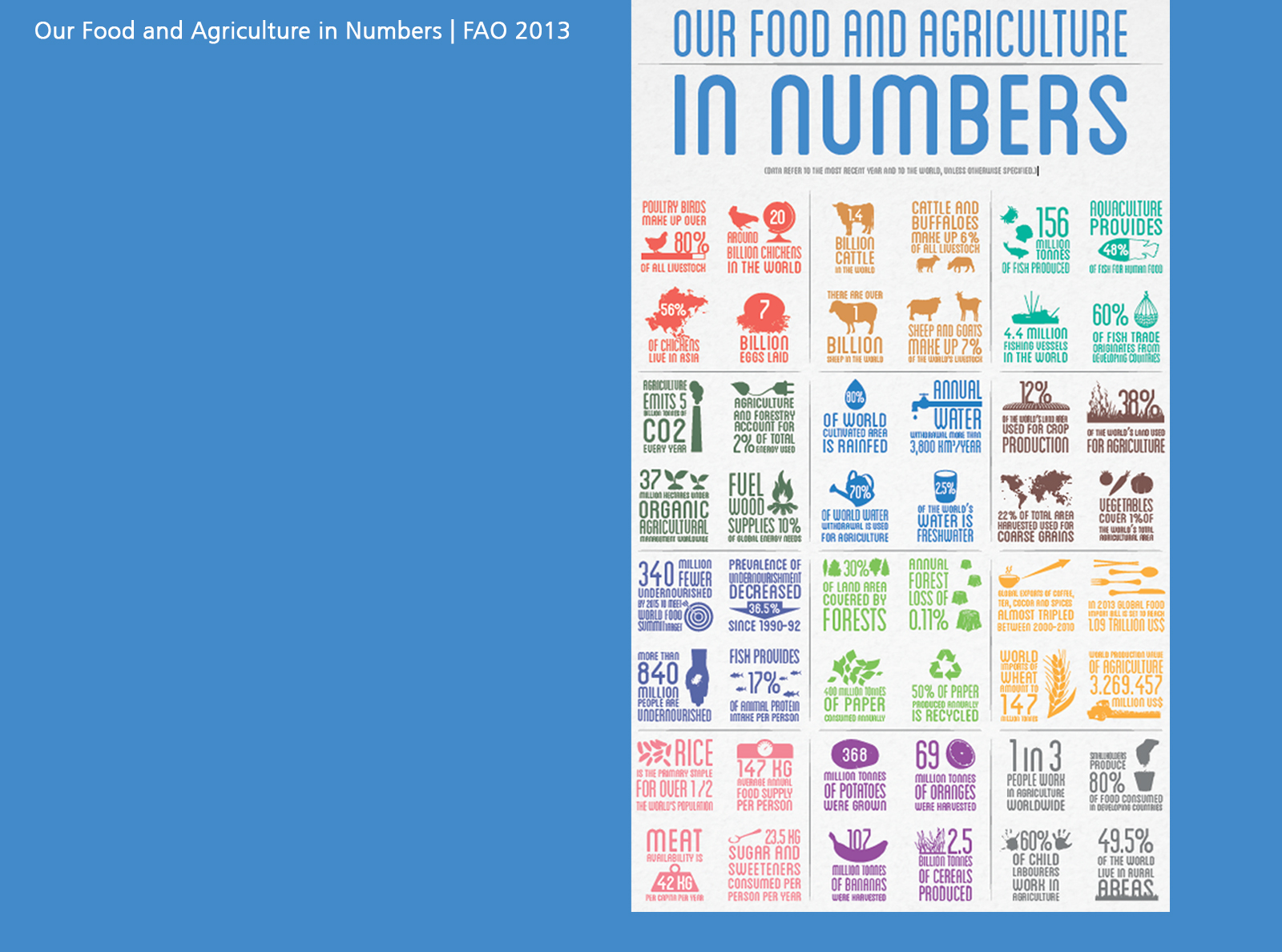 Our Food and Agriculture in Numbers   FAO 2013