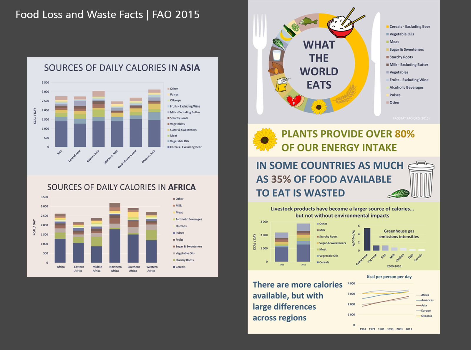 What the World Eats   FAO 2015