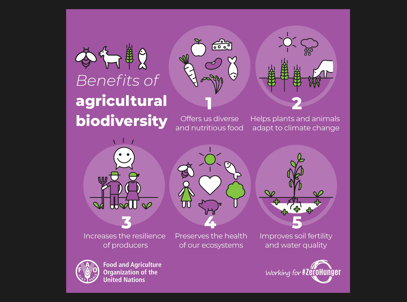 Benefits of agricultural biodiversity