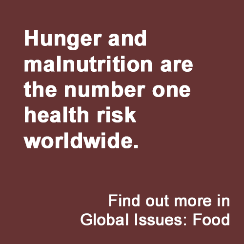 Hunger and malnutrition are the number one health risk worldwide.  Find out more in Global Issues: Food.