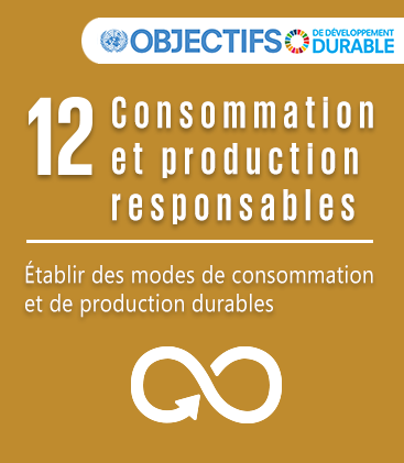 ODD - Objectif 12 : Consommation et production durables