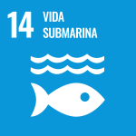 https://www.un.org/sustainabledevelopment/es/wp-content/uploads/sites/3/2019/09/S-WEB-Goal-14.png