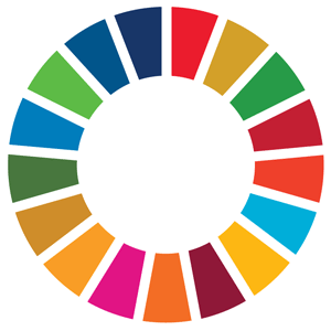 SDG Goals Official Logo