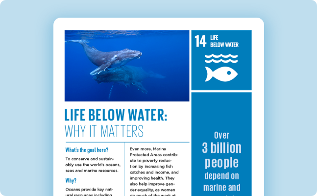 Oceans - United Nations Sustainable Development