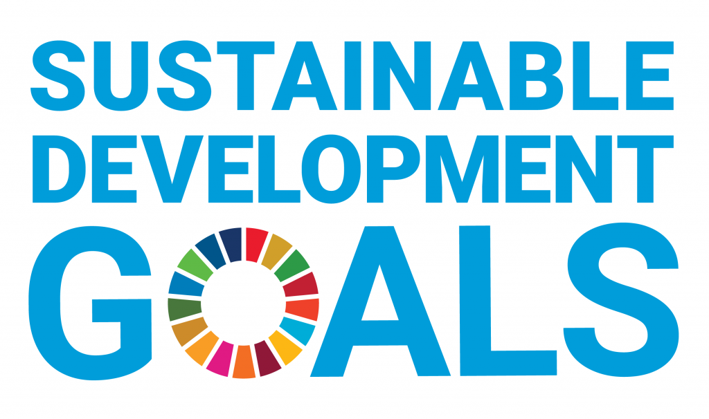 Image result for un sustainability goals
