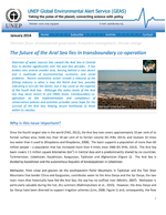 (The) future of the Aral Sea lies in transboundary co-operation