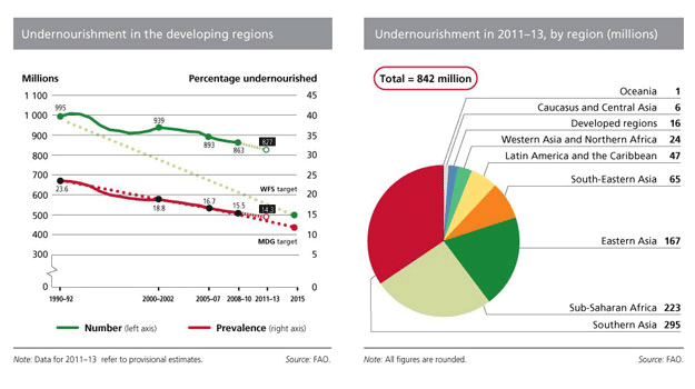 undernourishment in 2011-2013 by region (millions)