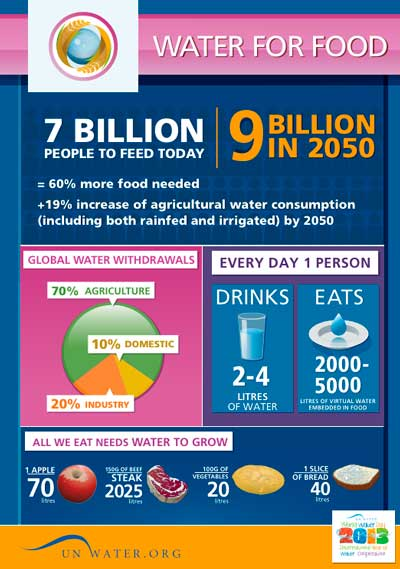 Water and food security   International Decade for Action 'Water for