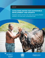 Catalyzing water for sustainable development and growth. Framing Water Within the Post-2015 Development agenda: options and considerations.